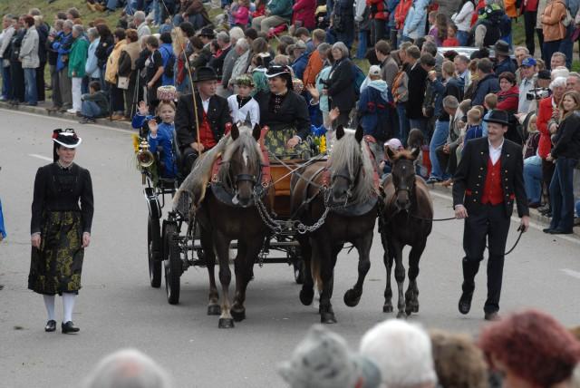 Kutsche auf dem Festumzug beim Rossfest in St. Märgen