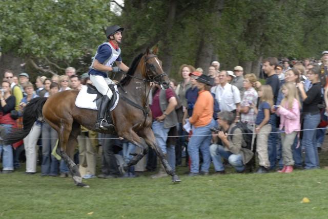 Hochleistungspferde sind meist so schlank, dass man die Rippen sehen kann