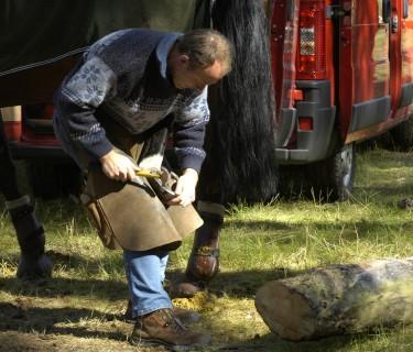 Pferd beschlagen oder barhuf lassen