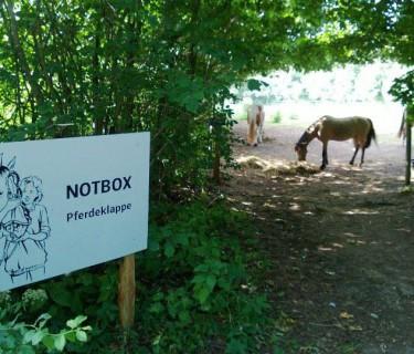 Die Pferdeklappe