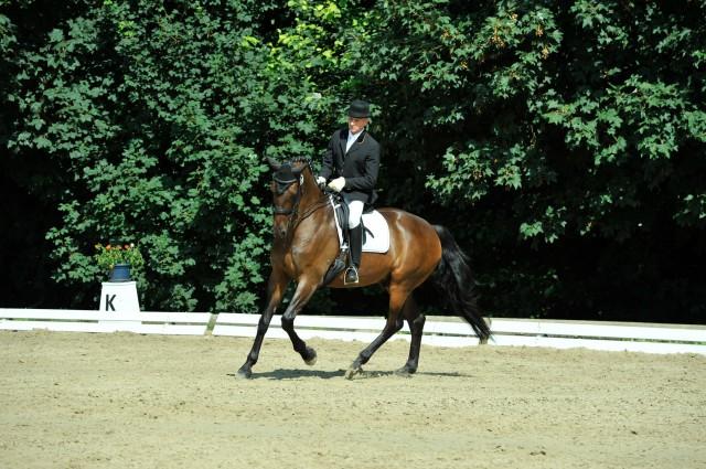 Beinm Dressurreiten soll das Pferd in der Kurve nach innen gebogen - spurig gehen